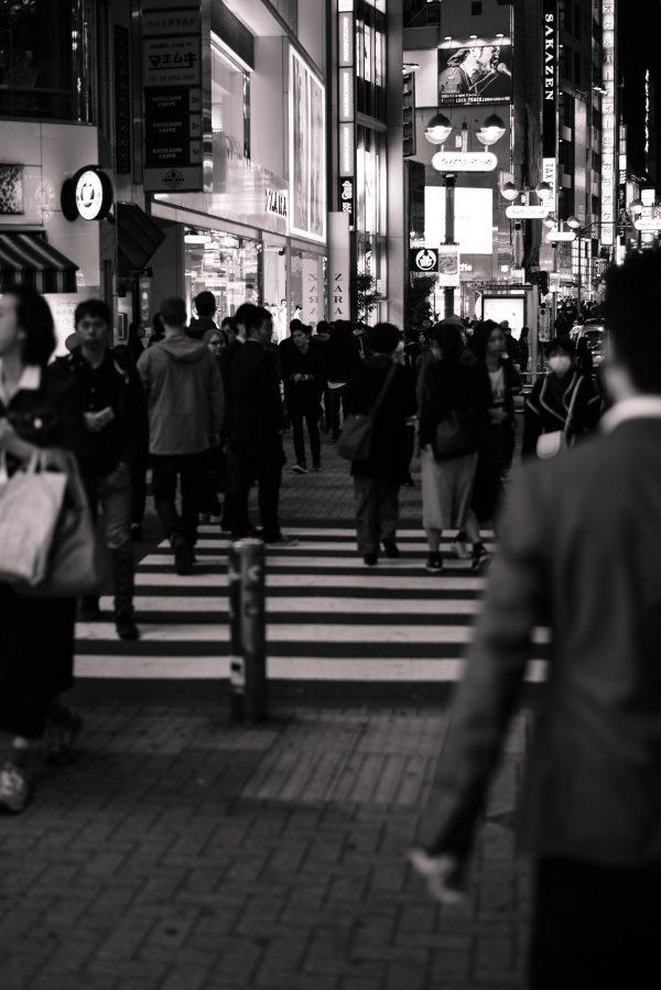 Shibuya Tokyo in S/W